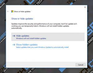 hide updates windows 10